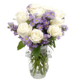 ดอกกุหลาบวาเลนไทน์สีขาว